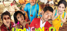 Udanchhoo (2018) Hindi Full Movie 720p HDRip 700MB x264 Download