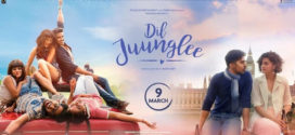Dil Juunglee (2018) Hindi Movie 720p HDRip 700MB ESubs Download