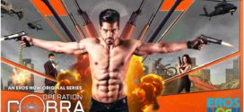 Operation Cobra 2019 Hindi 720p HDRip 1.2GB Download