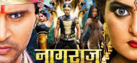 Nagraj (2019) Bhojpuri Movie 720p HDTVRip 700MB Download