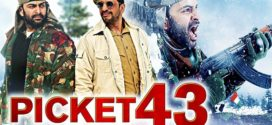 Picket 43 (2019) Hindi Dubbed 720p HDRip 700MB Download