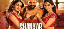 iSmart Shankar 2019 Telugu Full Movie 720p pDVDRip 700MB x264