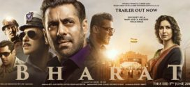Bharat 2019 Hindi Movie 720p HDRip 700MB x264 ESub