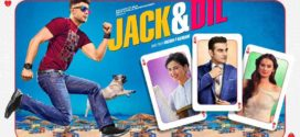 Jack And Dil 2019 Hindi Movie 720p HDRip 600MB x264