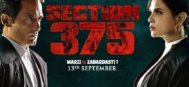Section 375 2019 Hindi Movie 720p DVDScr 700MB x264 Download