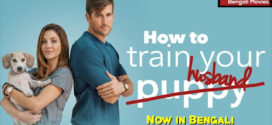 How to Train Your Husband 2020 Bangla Dubbed Full Movie 720p HDRip 1.1GB | 350MB MKV Download