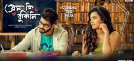 Prem Ki Bujhini 2020 Bengali Movie 720p HDRip 650MB x264 MKV *Official*