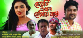 Meyeti Ekhon Kothay Jabe 2020 Bangla Movie 720p ORG HDRip 950MB MKV *Exclusive Hit*