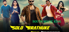 Solo Brathuke So Better 2021 ORG Hindi Dubbed 720p HDRip ESubs 950MB x264 AAC